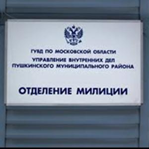 Отделения полиции Ольги